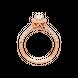 Nhẫn Kim cương Vàng 14K PNJ DDDDX000128 2