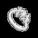 Nhẫn Vàng trắng 10K đính đá ECZ PNJ XMXMW001951