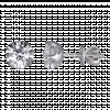 Bông tai Kim Cương PNJ Vàng trắng 14K 39971.520
