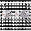 Bông tai PNJ Dáng Ngọc Vàng trắng 14K đính ngọc trai 81109.600