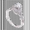 Nhẫn Kim Cương PNJ Vàng trắng 14K 81462.516