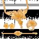 Bộ Trang Sức Cưới PNJ Rạng Rỡ Tình Xuân Vàng 22K