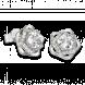 Bông tai PNJ Galaxy Vàng trắng 10K đính đá ECZ 87587.100