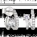 Bông tai PNJ Vàng trắng 10K đính đá ECZ 91166.100