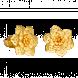 Bông tai cưới Vàng 24K PNJ 0000Y000114