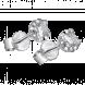 Bông tai Kim Cương PNJ Vàng trắng 14K 57898.5A0