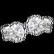 Bông tai Kim cương Vàng trắng 14K PNJ DDDDW001336