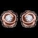 Bông tai Vàng 10K đính đá ECZ Swarovski PNJ XM00X000030